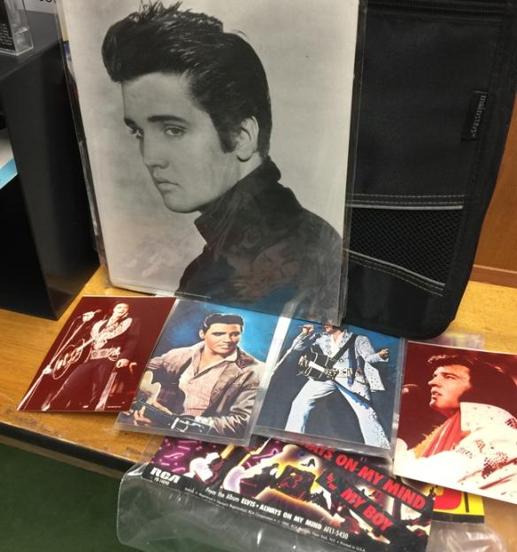 Elvis IMG_2752.jpg